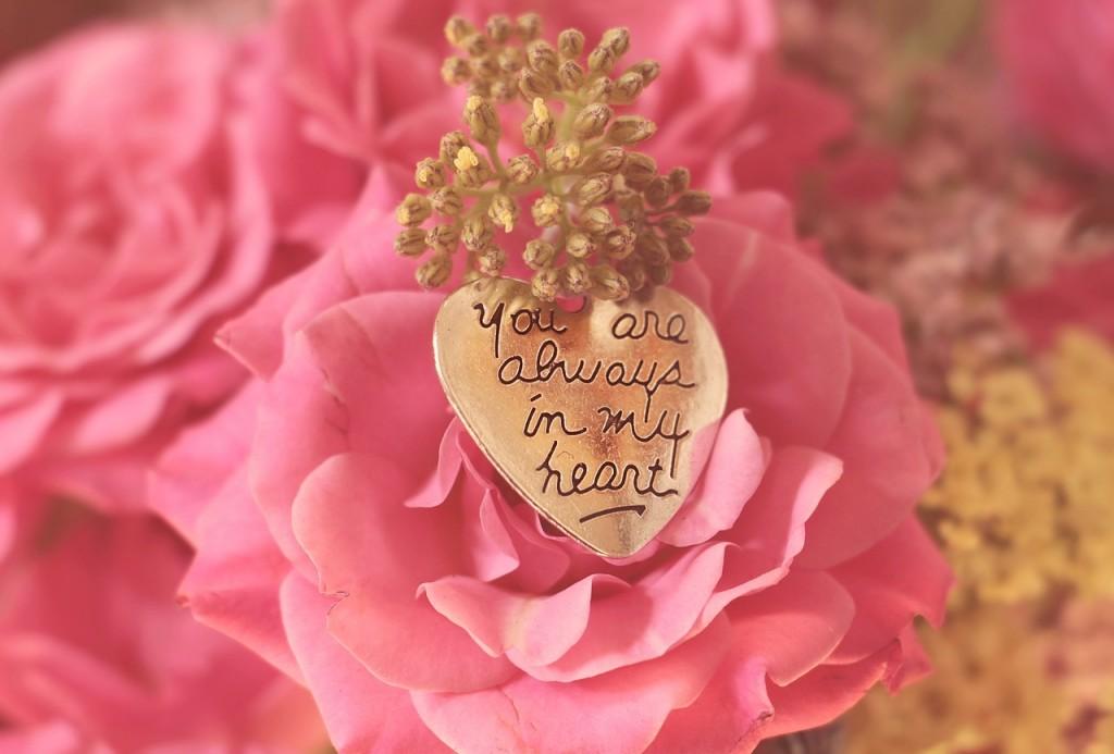 pinkrose_heart